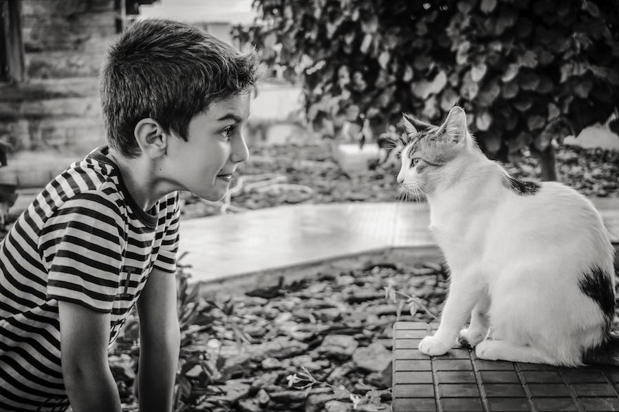 dijete-i-zivotinje